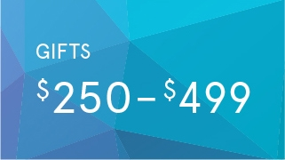 Gifts by Price:  $250 - $499 >